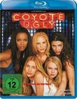 COYOTE UGLY - BLU-RAY - Komödie