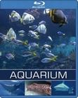 AQUARIUM - BLU-RAY - Impressionen