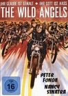 WILD ANGELS