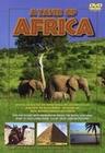 A TASTE OF AFRICA - DVD - Impressionen