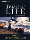 THE TRIALS OF LIFE [4 DVDS] - DVD