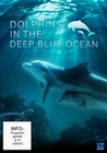 DOLPHINS IN THE DEEP BLUE OCEAN - DVD - Tiere