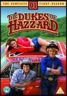DUKES OF HAZZARD SEASON 1 - DVD - Television Series