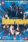 DOBERMANN - DVD - Action Adventure