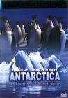ANTARCTICA-IMAX FILM - DVD - Travel/Places of Interest