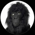 GORILLA MASKE - AFFENMASKE - Masks - Tiermasken