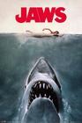 1 x DER WEISSE HAI POSTER JAWS KEY ART