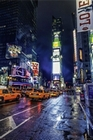 NEW YORK TIMESQUARE -  POSTER MANHATTAN - Kunstdrucke