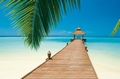 FOTOTAPETE STRAND PARADISE BEACH